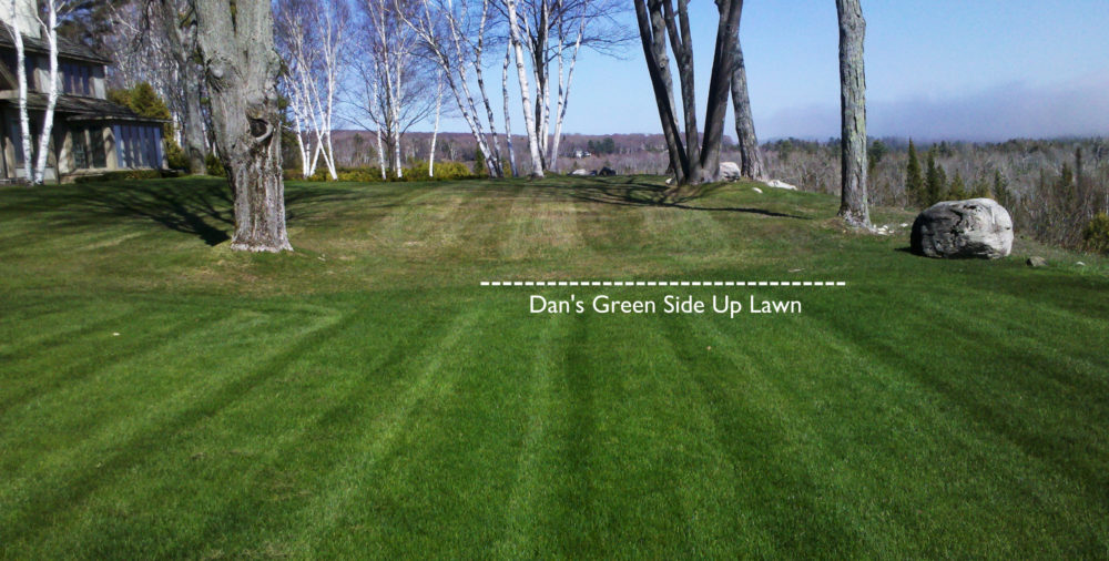 Dan's Green Side Up; P.O. Box 692; Harbor Springs, MI 49740; 231-526-6287 - Dan's Green Side Up - Northern Michigan Lawn And Landscape